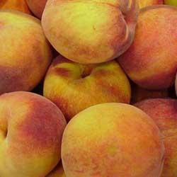 Peach and Almond Yogurt Cakes